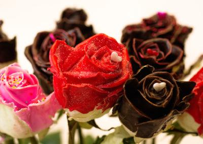 Růže VIP 99,-